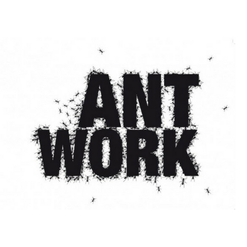 AntWork SoundCity